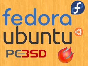 Triple Booting Fedora, Ubuntu and PC-BSD